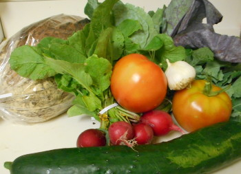 The weekly bounty. Mmm, all those brassica-type leaves...