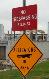 Trespassing ordinance enforced by alligator (taken at pedestrian bridge behind Bonnabel Pump Station)