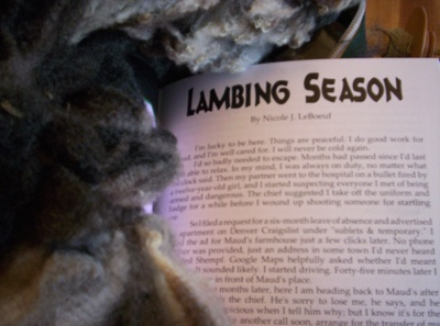 ''Lambing Season'' by Nicole J. LeBoeuf, featuring a lovely variegated wool